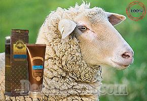 Một trong những dòng mỹ phẩm sang trọng nhất hiện nay được bào chế từ nhau thai cừu và thảo dược thiên nhiên, chỉ với 135.000đ bạn sở hữu ngay  hộp Sữa Rửa Mặt Premium Placenta 3W Clinic của Hàn Quốc so với giá thị trường 350.000đ.
