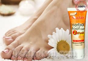 Kem trị nứt gót chân Mayfair - 30ml bảo vệ và nuôi dưỡng gót chân của bạn trắng hồng. Sản phẩm nhập khẩu từ Thái Lan chỉ với giá 75.000đ. Có tại dealhotvn.com!