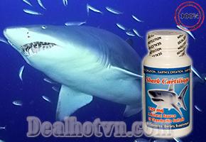 Bảo vệ Xương Khớp luôn chắc khoẻ với thực phẩm chức năng Shark Cartilage 100% Nguyên chất từ Sụn Vi Cá Mập - USA. Giá Cực Sốc 200.000đ.
