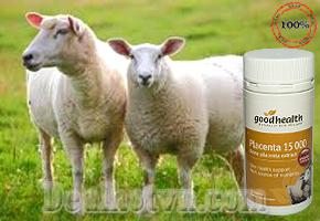 Nhau Thai Cừu - Good Health PLACENTA 15000 sản phẩm nhập khẩu từ New Zealand giúp loại bỏ nám, tàn nhang, trẻ hóa da, chống chảy xệ… Giá bán 599.000đ.