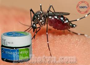 Dầu cù là thảo dược Green Balm Mosquito Brand Yanhee được sản xuất bởi bệnh viện Yanhee nổi tiếng nhất Thái Lan chuyên trị vết cắn do các loại côn trùng như muỗi, ong, kiến...giảm sưng, viêm, đau... combo 3 hộp 95.000đ.